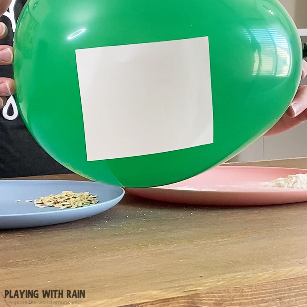 Paper and balloon static electricity experiment
