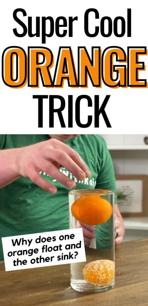 Peeled oranges sink and unpeeled oranges float