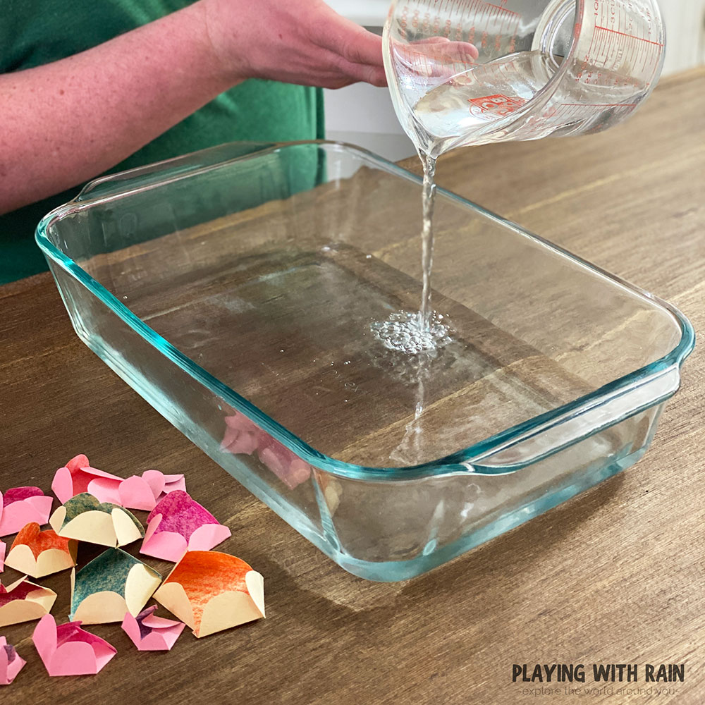 Pour water into a large pan