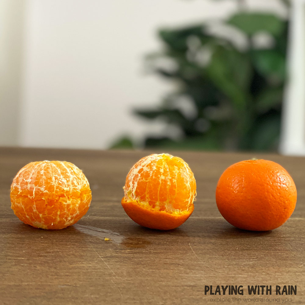 Peeled orange, half peeled orange, and unpeeled orange