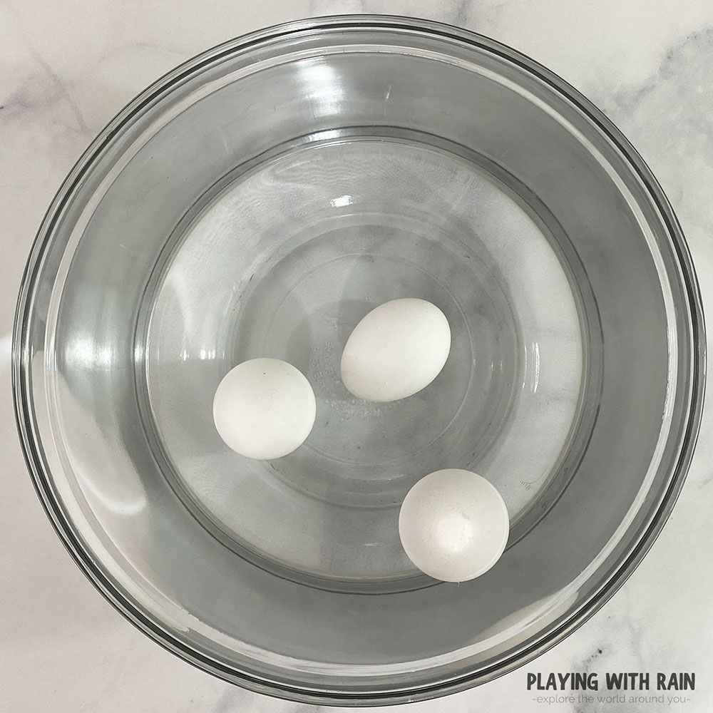 An old egg floats in water while fresh eggs sink