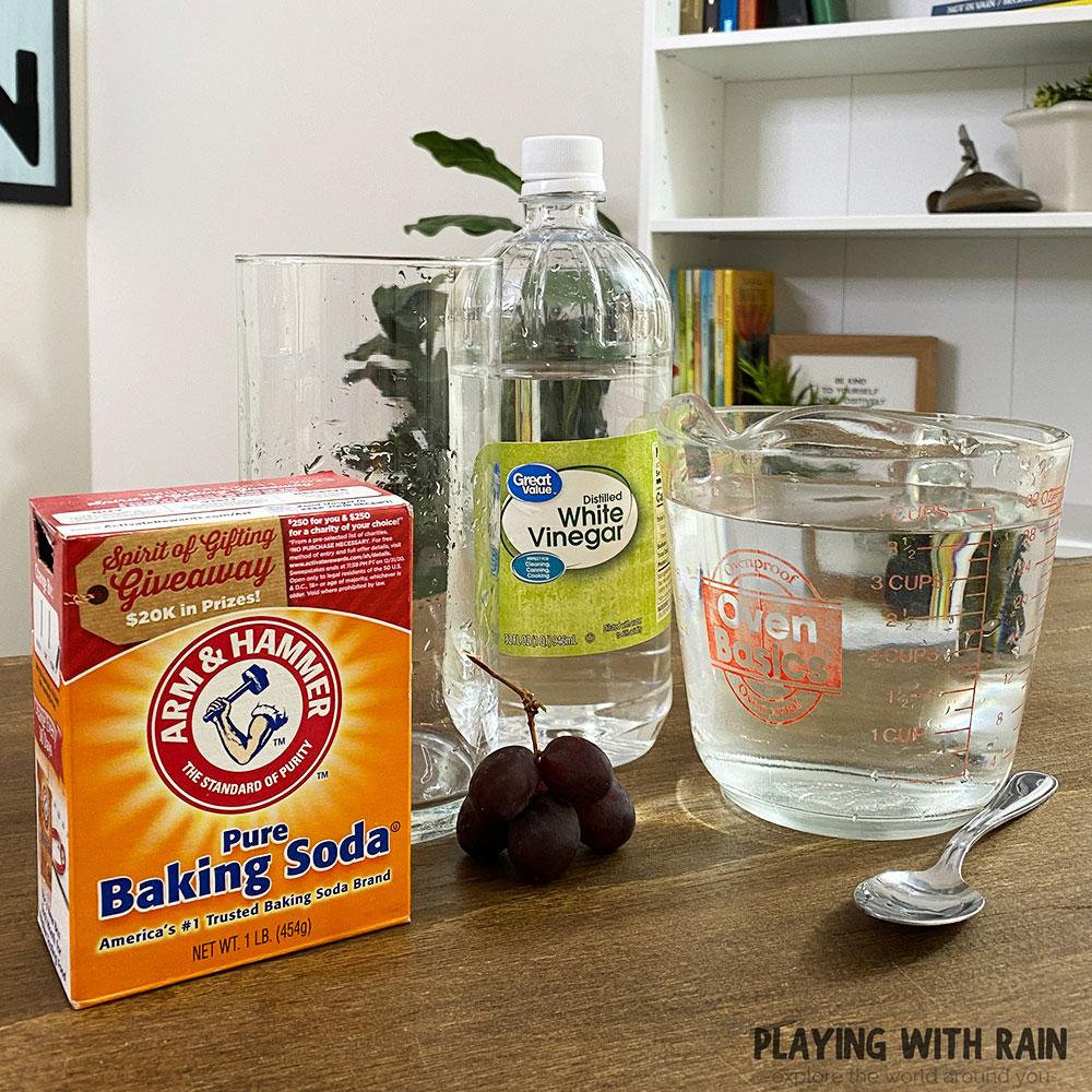 Baking soda, vinegar, water, and grapes