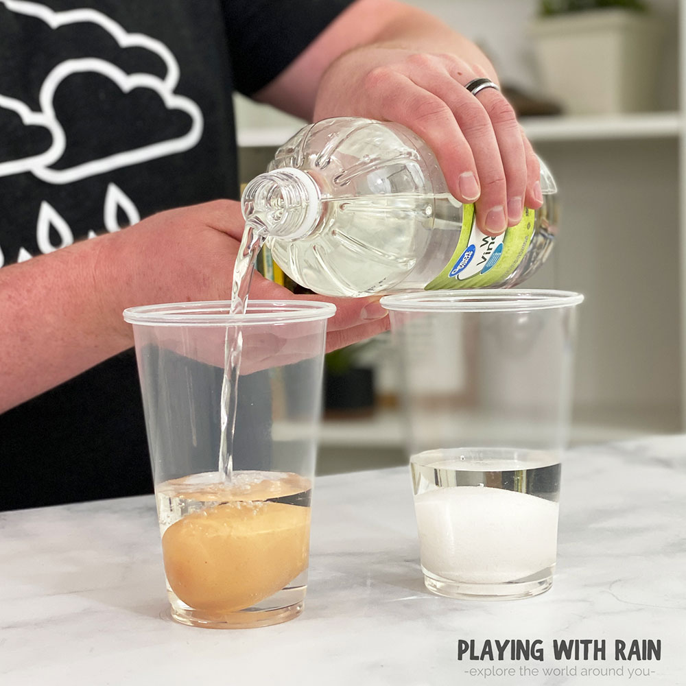 Pour enough vinegar into the cup to cover the egg