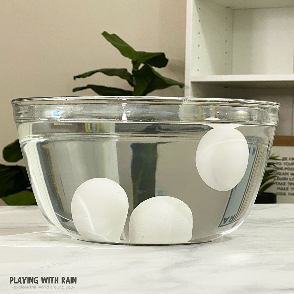 Eggs floating and sinking in water